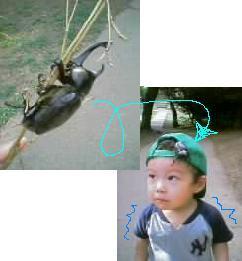 a0008622_1693951.jpg