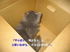 a0021508_123214.jpg