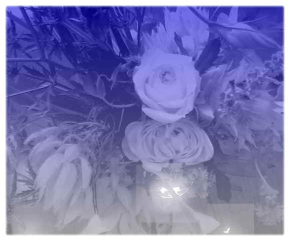 a0021871_12515949.jpg