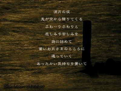 a0002073_0283562.jpg