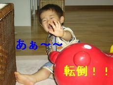 a0020452_4323511.jpg