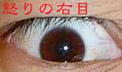 a0000281_1210621.jpg