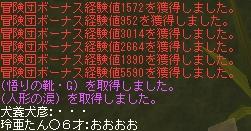 a0037157_1743572.jpg
