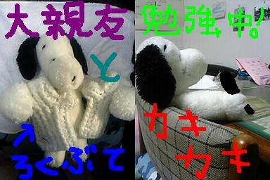 a0018804_1155845.jpg