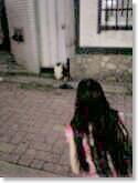 c0024561_19452961.jpg