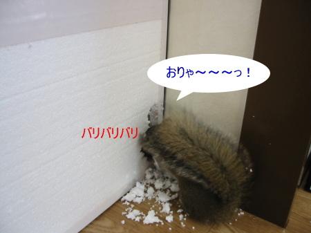 a0015164_16331139.jpg
