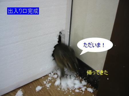 a0015164_1634697.jpg