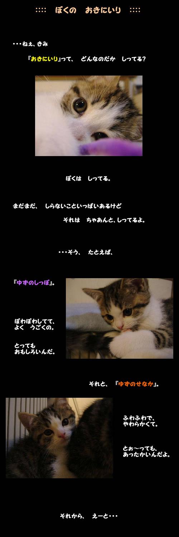 a0018608_671884.jpg