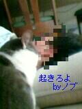 a0013479_23191630.jpg