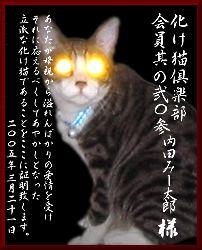 c0066368_2075585.jpg