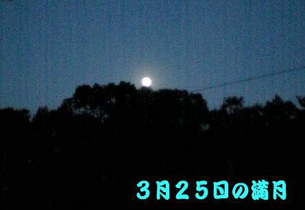 c0017802_1985928.jpg