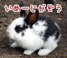 c0072032_1775442.jpg