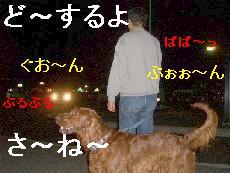 c0049339_12185050.jpg