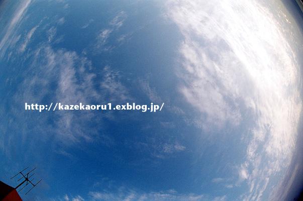 c0036880_1233831.jpg