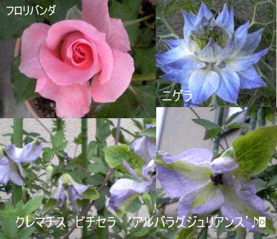 c0061288_5582636.jpg
