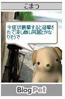 a0036897_18435925.jpg