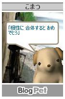 a0036897_18443958.jpg