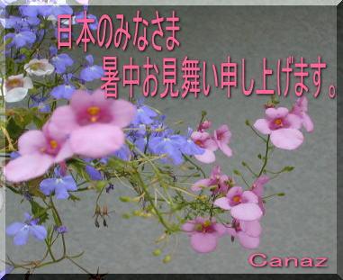 c0068653_1654254.jpg