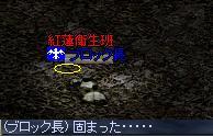 c0035735_1325420.jpg
