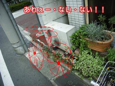 c0031808_2323319.jpg