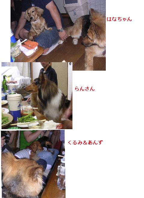 c0065643_065679.jpg