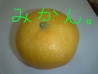 c0023449_14532443.jpg