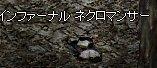 e0058448_2101610.jpg