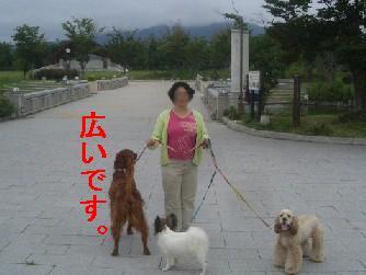 c0049339_1624174.jpg