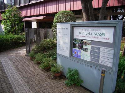 e0027435_2011364.jpg