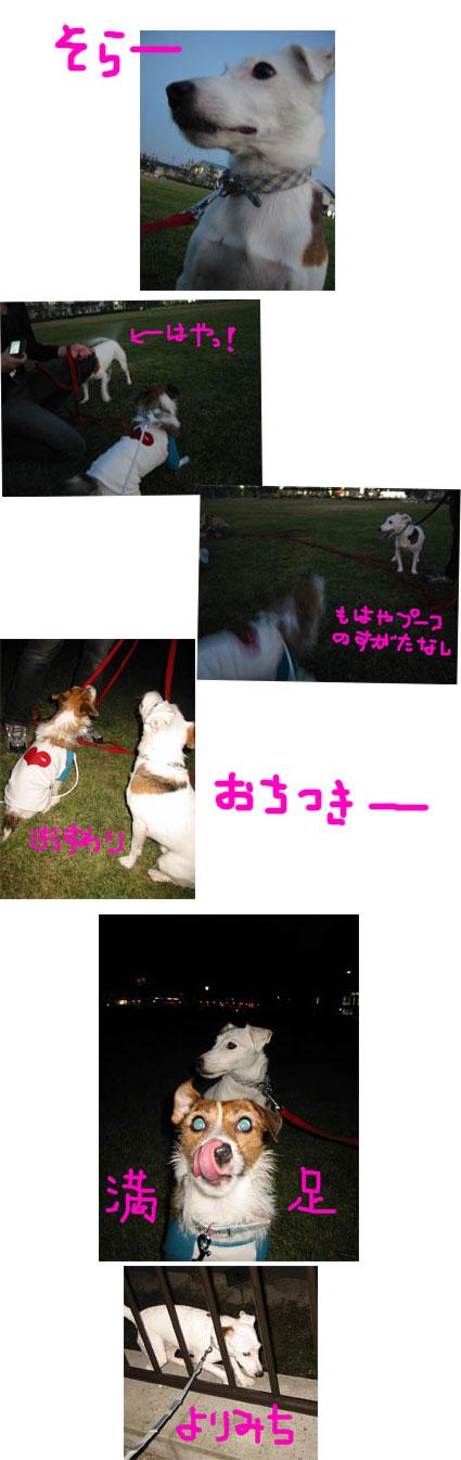 e0058289_2041381.jpg