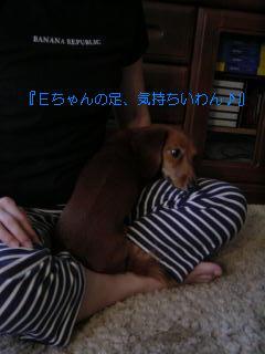 c0058494_651217.jpg