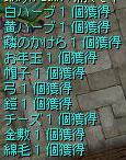 c0009992_17555765.jpg