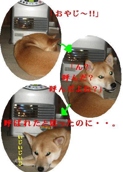 e0085147_114029.jpg