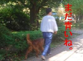 c0049339_13381651.jpg