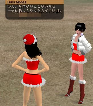 c0074259_4175195.jpg