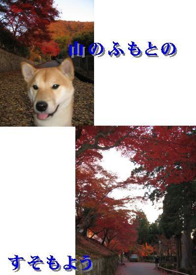 e0085147_20502358.jpg