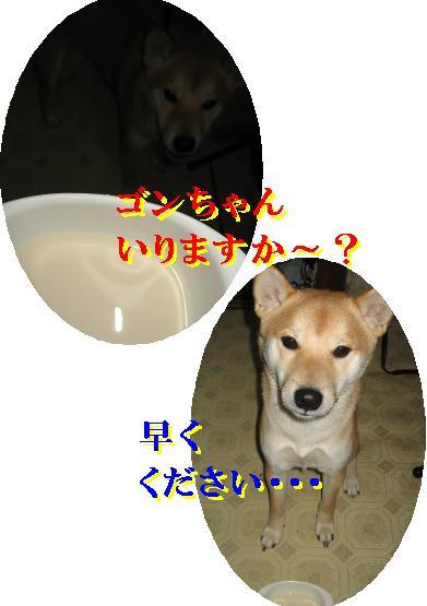 e0085147_0241635.jpg
