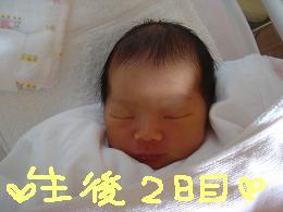 e0068658_1011979.jpg