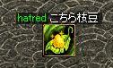 a0061353_15401161.jpg