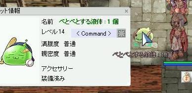 e0083733_6291294.jpg