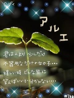 e0063564_19114771.jpg