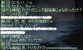 e0090007_5572032.jpg