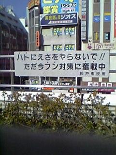 a0006000_1744435.jpg