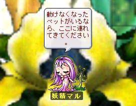 c0013211_172146.jpg