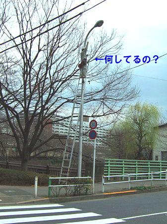 c0044199_15432587.jpg