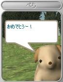 c0070849_1751569.jpg