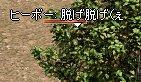 e0058448_11553085.jpg