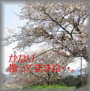 e0085147_1584432.jpg