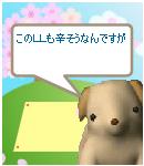 c0037212_2053526.jpg