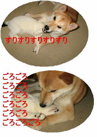 e0085147_11221278.jpg